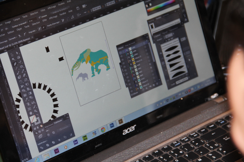 atelier-2-dataviz-elephant
